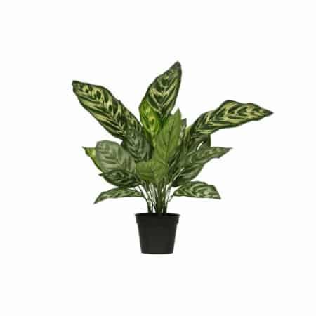 Deze Aglaonema kunstplant in pot komt uit de collectie van het Nederlandse merk WOOOD.