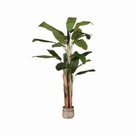 LABEL51 Musa kunstplant groen 180cm
