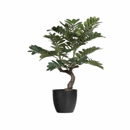 WOOOD Zamia kunstplant groen 76cm